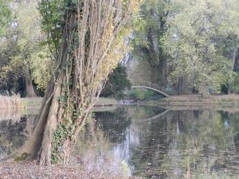 Natuurfoto met een uitkijk aan het water met in de verte een houten brug