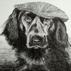 Pentekening in zwarte pen, hond met klak op, A4 formaat, verkocht