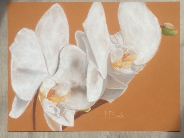 Tekening Orchidee 22 mei'18